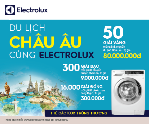 banner electrolux