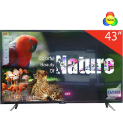 Tivi TCL 43 inch Smart 43S6000